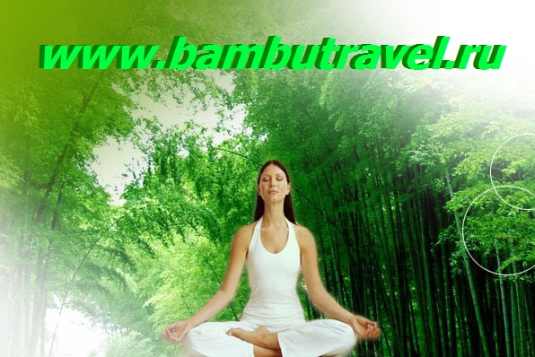bamboo-clothing-2.jpg